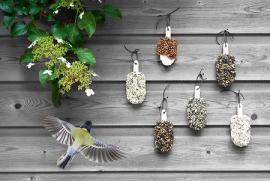 Desserts für Vögel